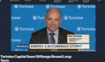 Tortoise on BloombergTV