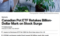 ETFMJ in Bloomberg